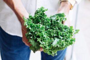 Das sind die gesündesten Smoothies - Grüne Zutat - Adolfo Felix - Unsplash