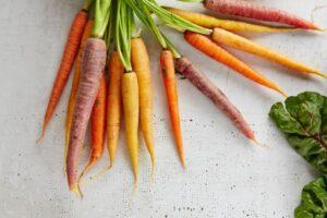 Natürlicher Sonnenschutz von innen - Karotten - gabriel-gurrola